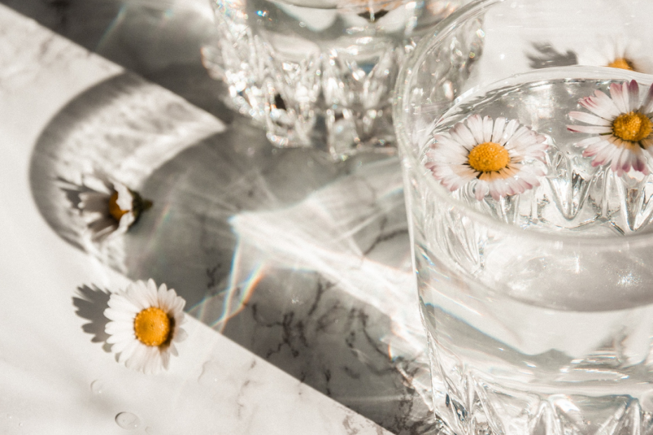 Image of glasses filled with water and a few chamomile flowers